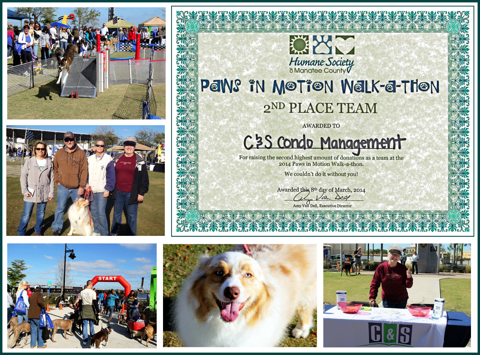 2014 paws in  motion
